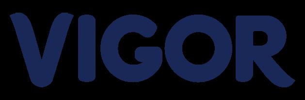 logo-load-VIGOR